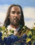 Jesus With Grapes