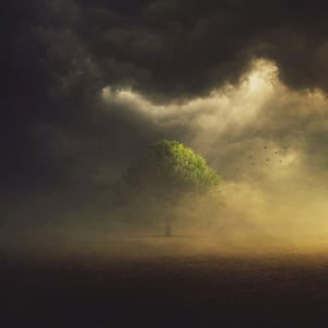 A dark storm is surrounded a single tree, but beams of light are coming down and shining upon it.