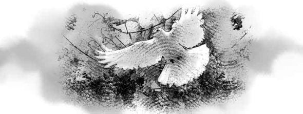 Holy Spirit represented as a dove