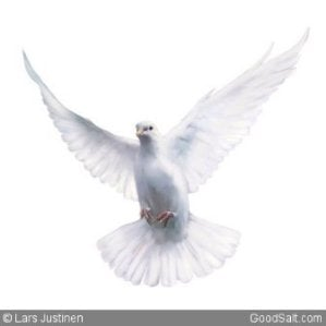 Holy Spirit in Form of Dove