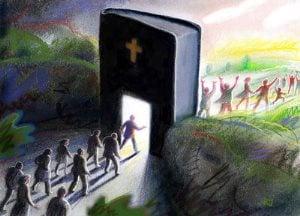 Image © Rolf Jansson from GoodSalt.com