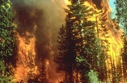 James 3:5-6 Wildfire in California from Wikimedia Commons