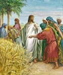 Christ and Disciples in Grain Field