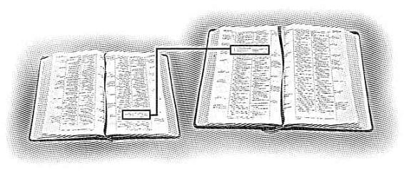 Two Open Bibles - Comparing Scripture